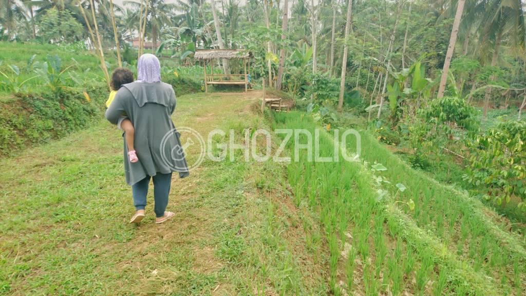 Kali Rau Winong Banjarnegara