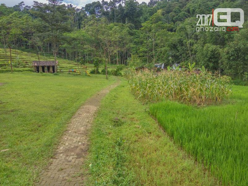 Curug 7 Bidadari Semarang