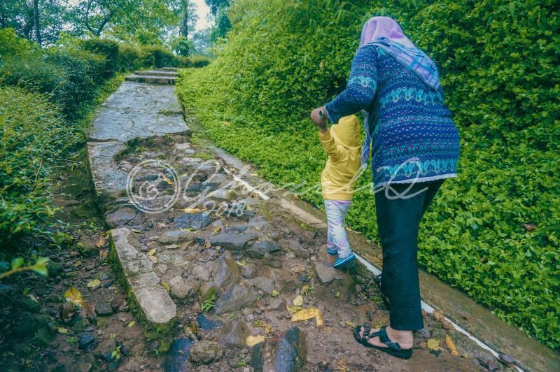 Pemandian Air Panas Gonoharjo Nglimut