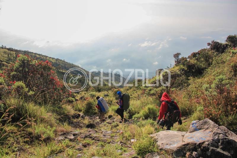 Pendakian Gunung Lawu