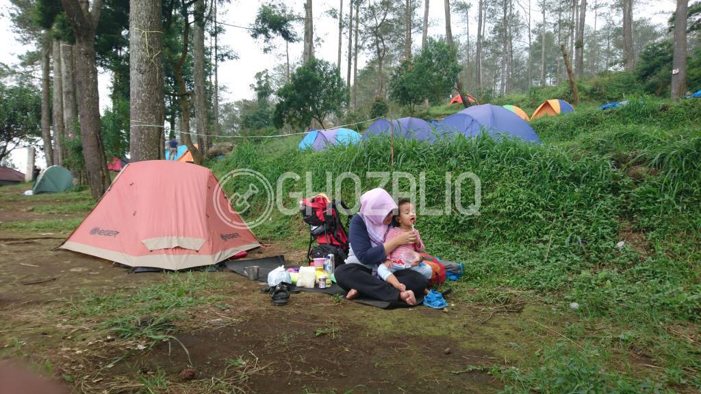 camping basecamp mawar