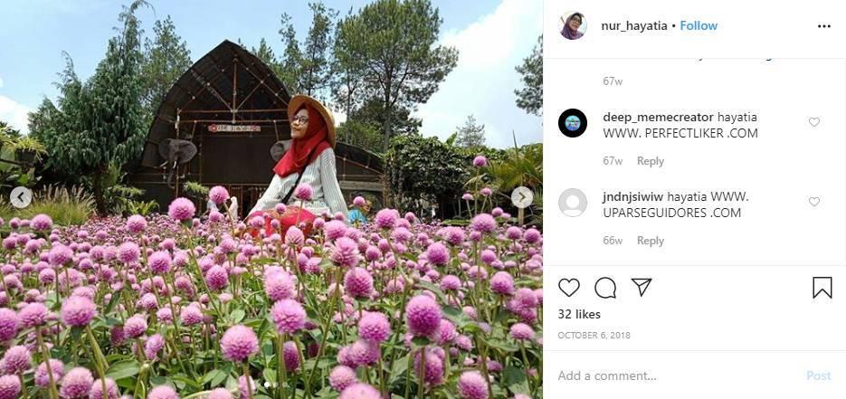 Taman Bunga Lembang Cihideung