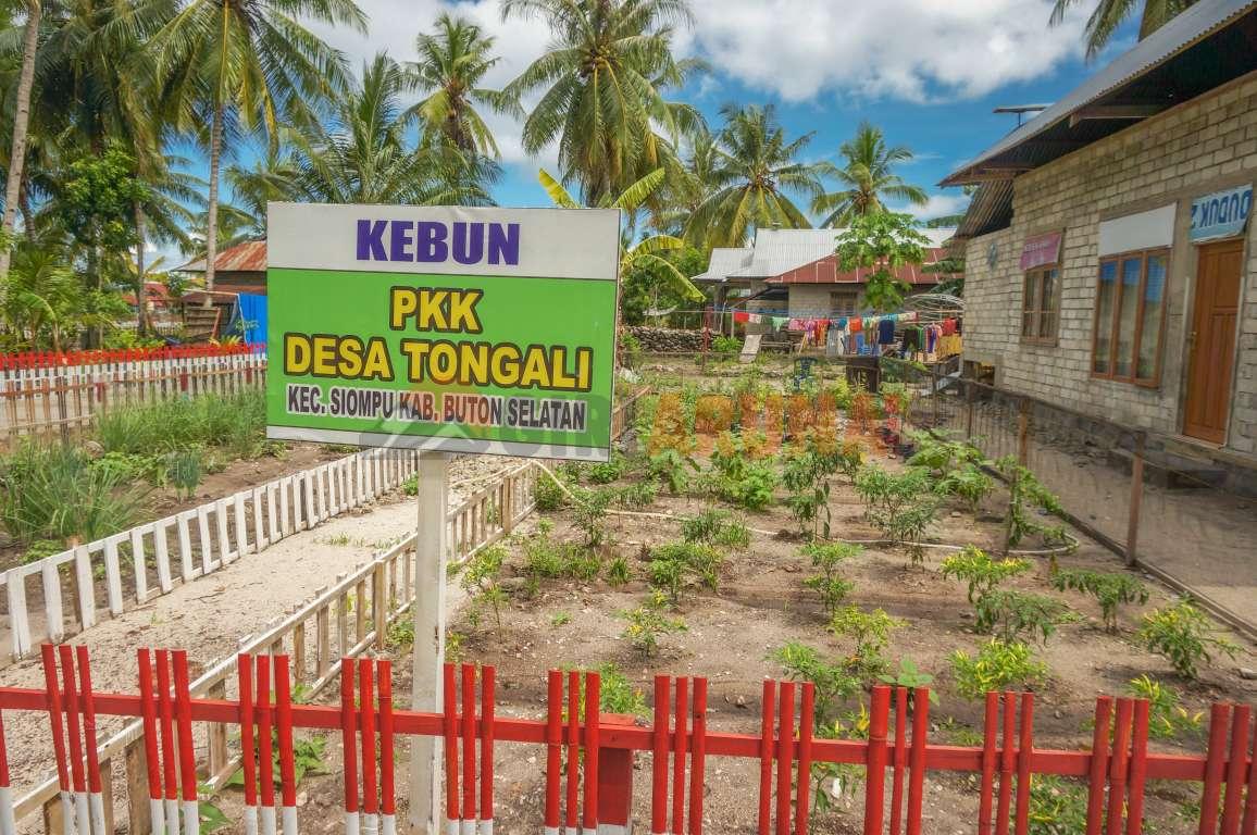 Desa Tongali